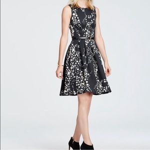 Ann Taylor Floral Garland Flare Dress